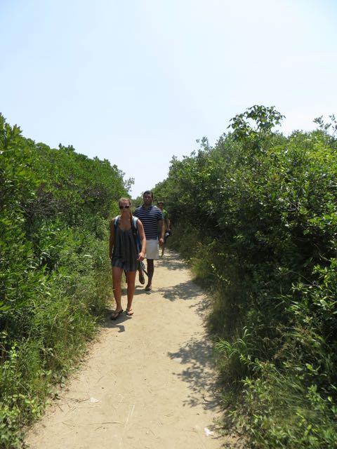 Trail Head Mohegan Bluff