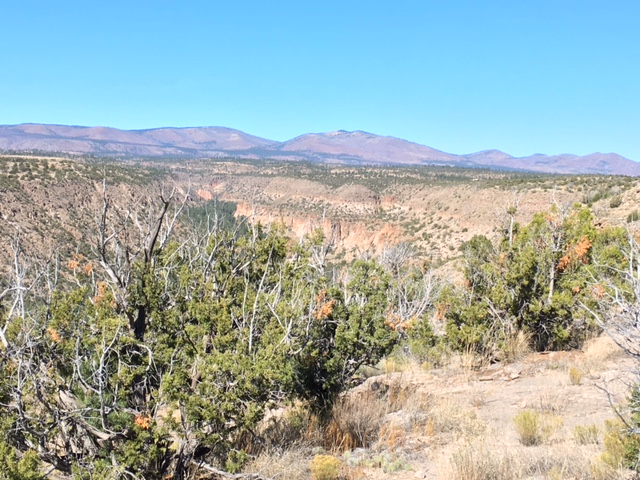 Drive Into Bandelier