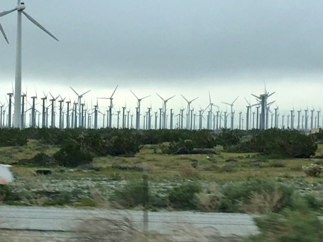 CA Windmill Farm