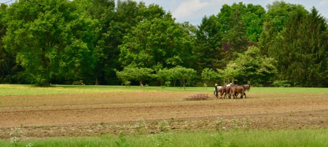 Chapter 8 | Amish Country Hudson River Valley & Big Apple Here We Come